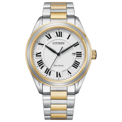 Men's Two Tone Eco-Drive Watch AW1694-50A